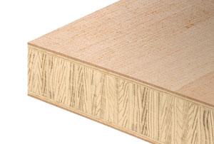 Functional door blanks  sc 1 st  Holz Hogger & Holz Hogger